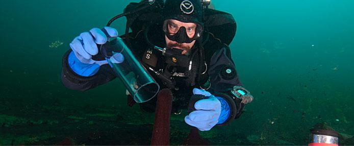 Scuba diver collecting lab samples