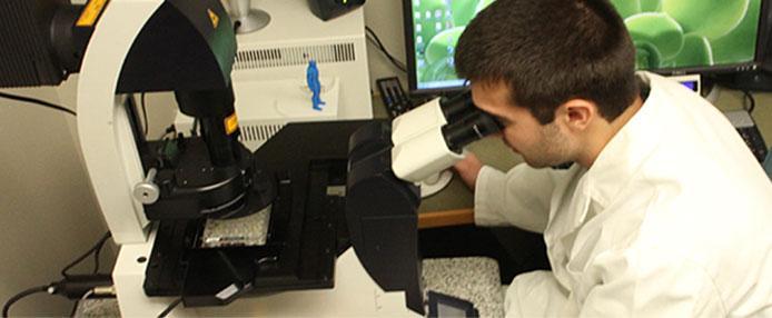 Man in lab using microscope